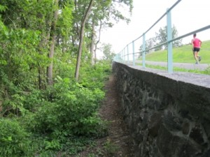 View of the old Briackyard Lane roadbed near the 17th CVI monument